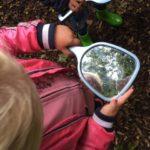 takken en bomen bekijken in de spiegel